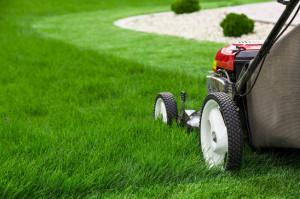 40449030 - lawn mower